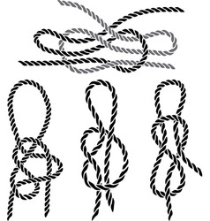 Sea knot 1 vector