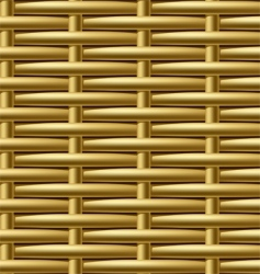 wicker pattern vector image vector image