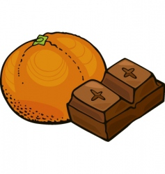 Orange fruit and chocolate block vector