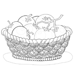 basket with tomatoes contours vector image