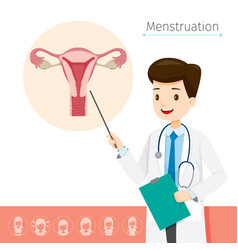 Doctor describes about cause to menstruation vector