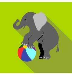 Elephant on a ball icon flat style vector