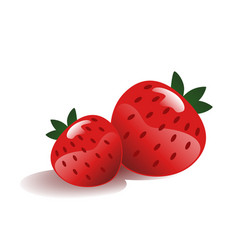strawberry isolated vector image