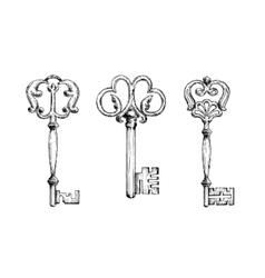 Three medieval vintage keys sketches vector