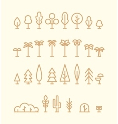 Set kinds trees palms fir spruces bushes linear vector