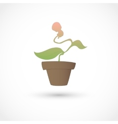 Baby plant vector