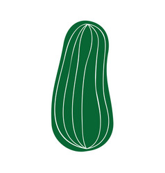 cucumber fresh vegetable icon vector image vector image