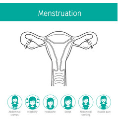Human uterus outline and menstruation symptom vector
