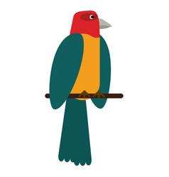 Parrot bird animal icon vector