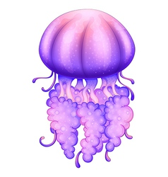 A lavender jellyfish vector