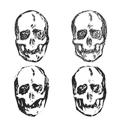 Set of skulls isolated on white background vector