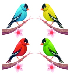 Group of birds in different color tones vector