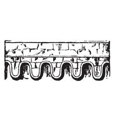 Corbel-table bricks vintage engraving vector