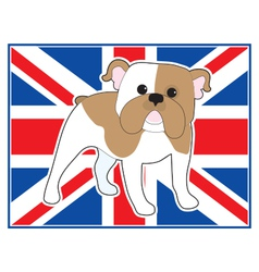 English Bulldog Flag vector image vector image