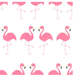 flamingo seamless pattern exotic tropical bird vector image