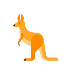 flat style of kangaroo vector image vector image