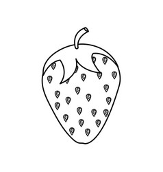 Strawberry fresh isolated icon vector