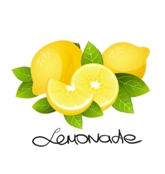 Fresh lemon fruit Realistic citrus slice vector image