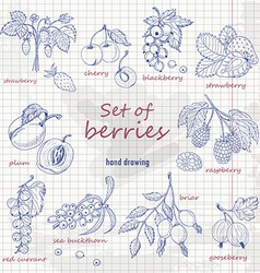 Set of garden berries on paper vector