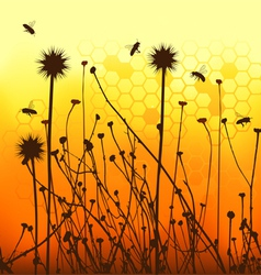 grass silhouettes backgrounds and bees vector image