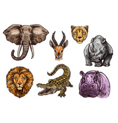 African animal sketch set of elephant lion hippo vector