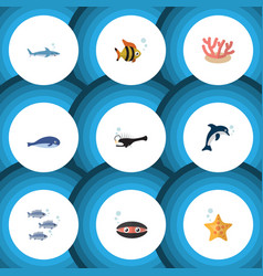 Flat icon sea set of fish scallop cachalot and vector