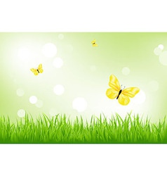 Green grass and yellow butterflies vector