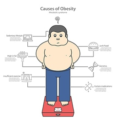 Causes of obesity and fat man vector