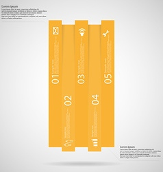 Infographic template with bar vertically divided vector