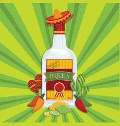Mexican tequila decoration vector