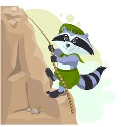 Climber descending rope Scout raccoon climbs rock vector image vector image