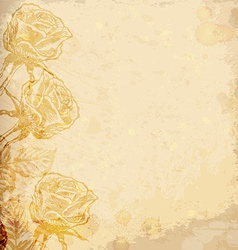 Realistic old paper with roses vector