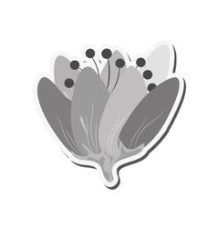 Delicate flower icon vector