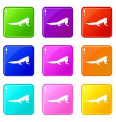 Iguana icons 9 set vector