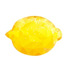 Whole lemon vector