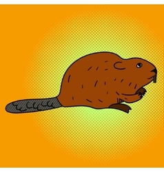 Beaver pop art aster vector