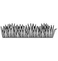 Black contour of field grass vector