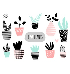 House plants collection vector