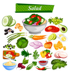 Food and spice ingredient for healthy salad vector