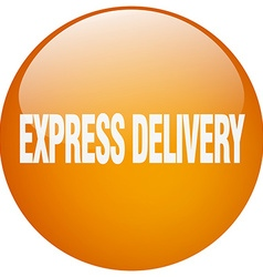 Express delivery orange round gel isolated push vector