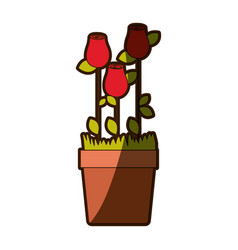 Colorful shading silhouette rosebuds planted with vector