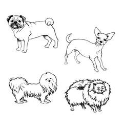 Sketch of set dogs for design vector