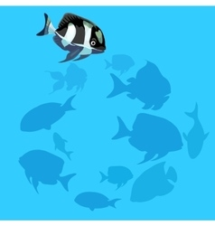 Black and white fish swims in the water vector