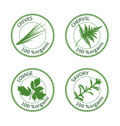 set of herbs labels 100 organic vector image