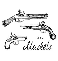 muskets set different guns vector image