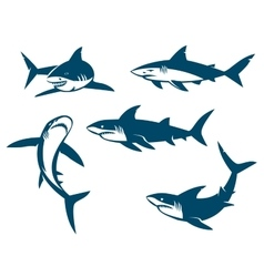Set of big sharks black silhouettes vector