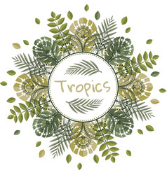 mandala with tropical leaves vector image