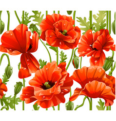 seamless pattern of red poppies realistic vector image