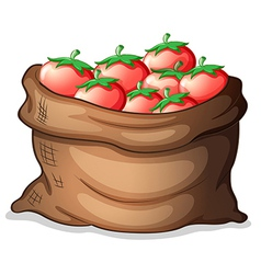 A sack of tomatoes vector image vector image