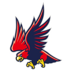 hawk mascot vector image vector image